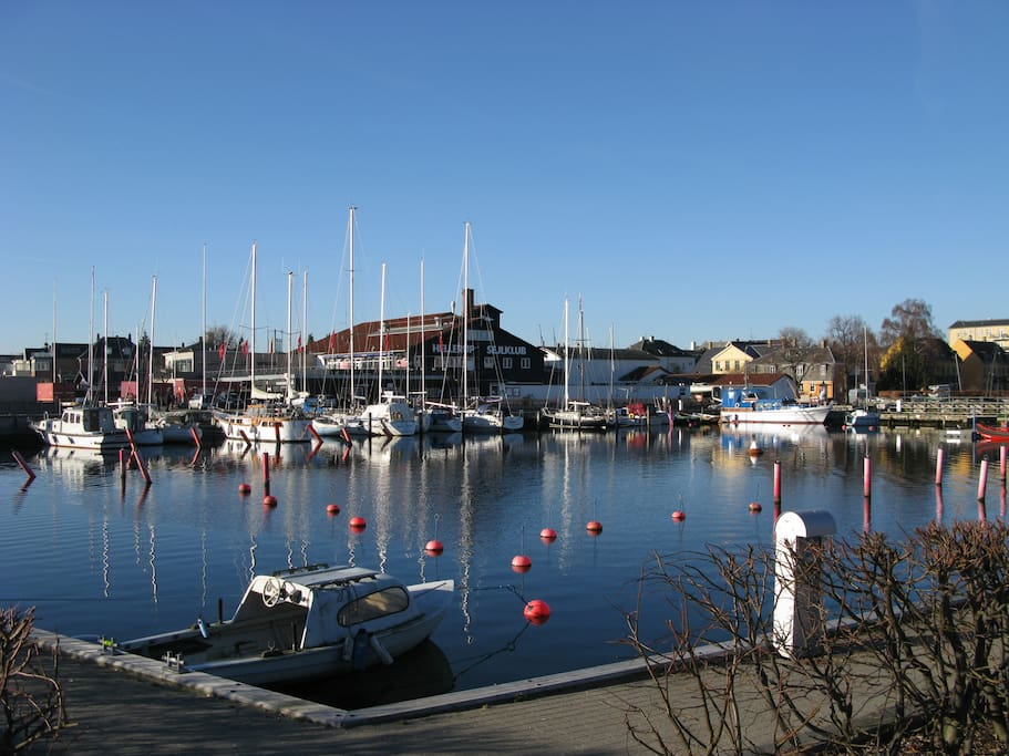 The little harbour just across the street