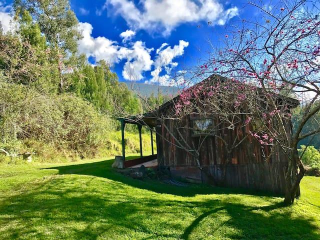 The Peach Blossom Cottage of Haleakala