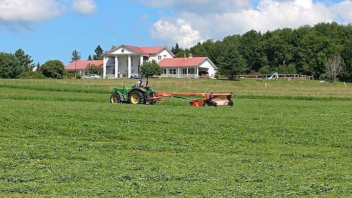Porter Brook Farm (Hardwick - Near Greensboro)