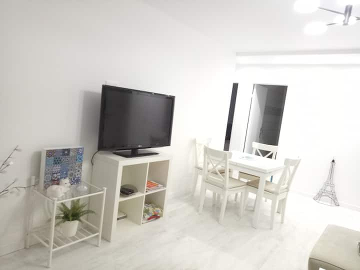 Large apartement near to Paris and metro station