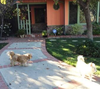 Charming & Cozy Private Master Bedroom & Ensuite - Los Angeles