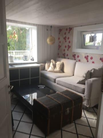TV-Room, comfy sofa to sleep on.