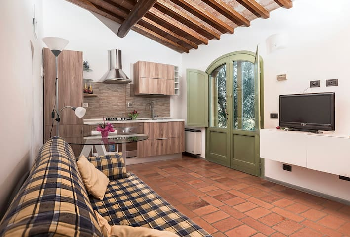 Hs4U Nice indipendent apartment near Florence - Signa - Appartement