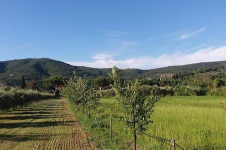 Agriturismo Il Gabbiano - Passignano sul Trasimeno