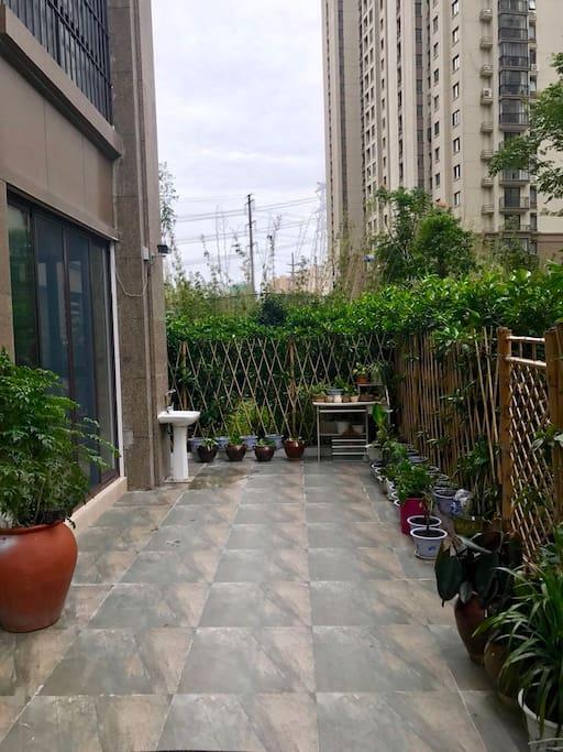 30平的私家庭院里,仿古的青砖,原色的竹篱笆,再加上很多的绿植和郁郁葱葱的绿化带,让我一 下子似乎感觉回到了一个世外桃源
