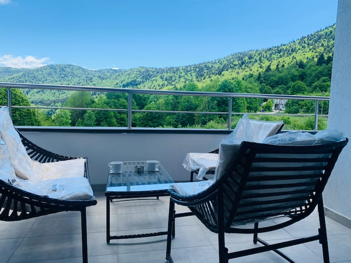 Entire Apartment in Sinaia with Amazing View