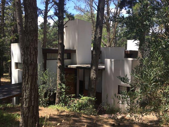Casa de diseño en el bosque de Mar Azul