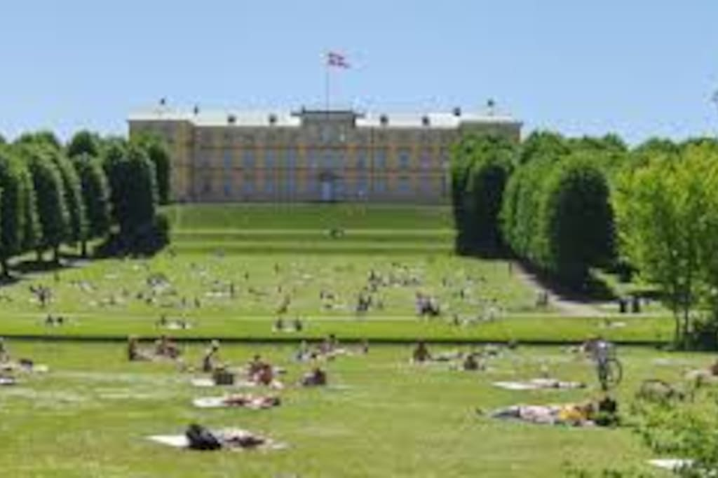 300 meters to park and Frederiksberg Castle.
