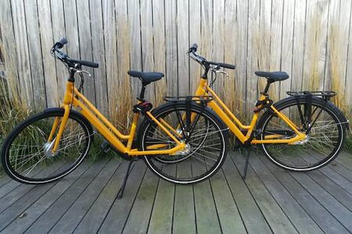 Bamboo room + 2 bicycles : +500 positive reviews