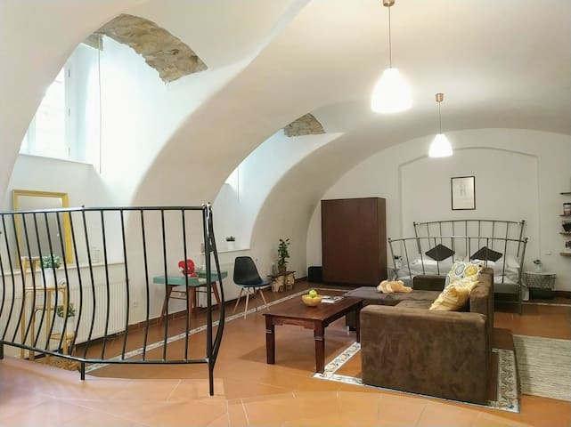 Historic romantic apartment with Private Entrance