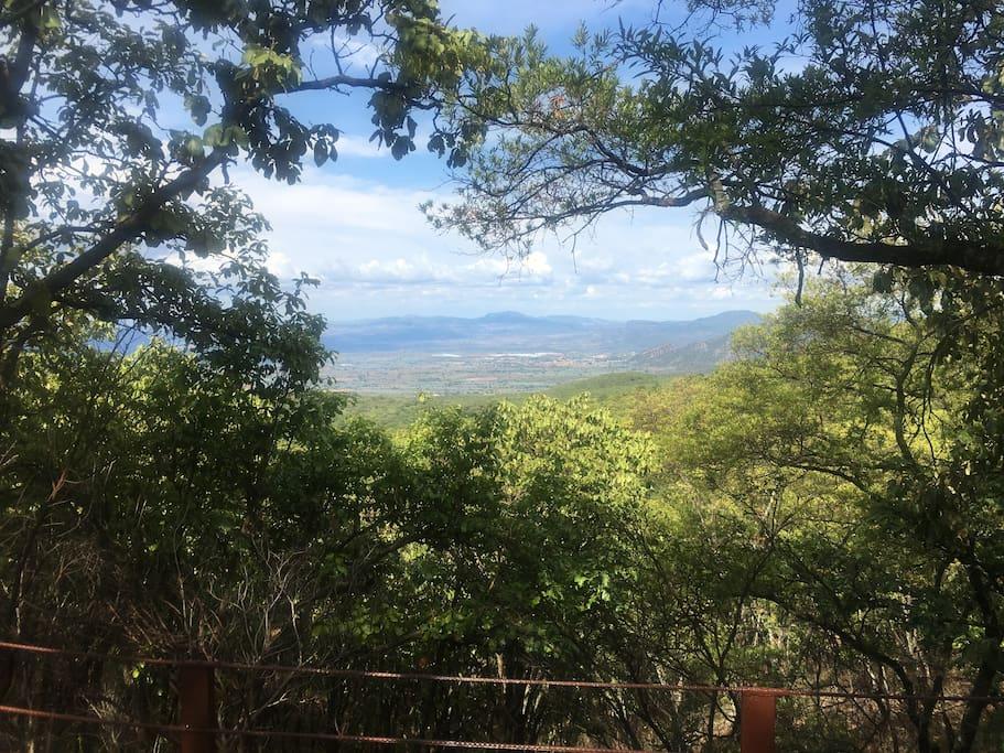 Mirador al valle agavero
