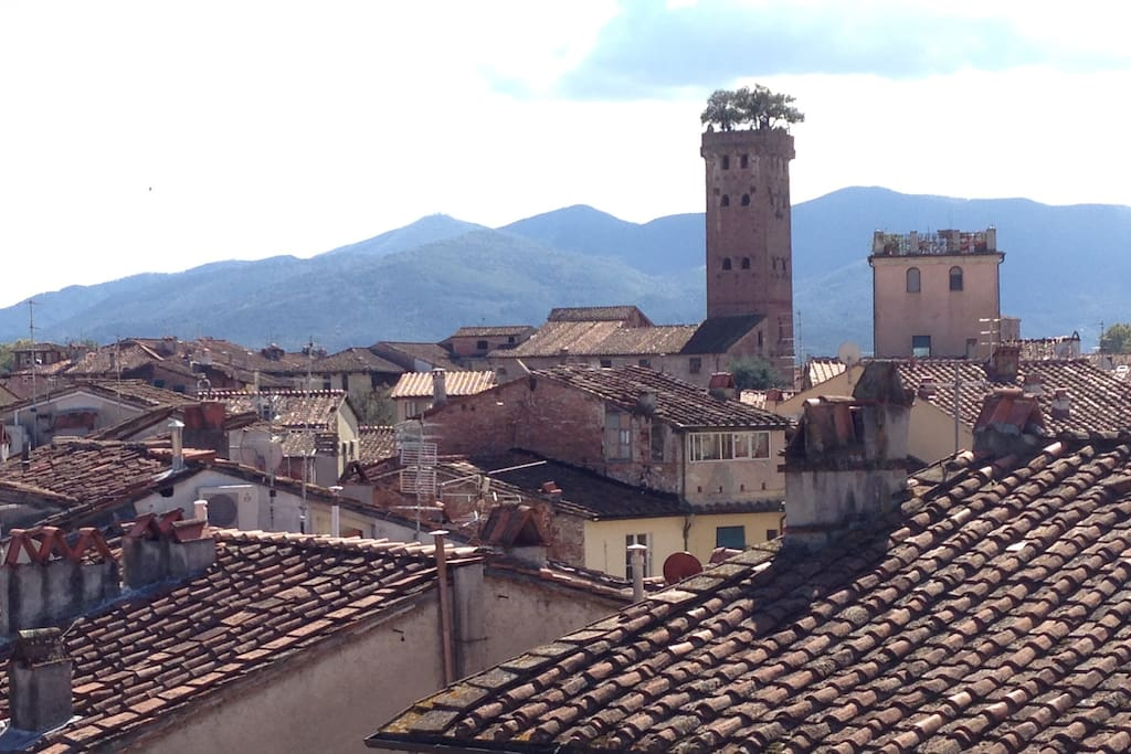 Skyline from the rooftop skylight- The Guinigi's Tower and Amphitheater's roofs just 50 m walking