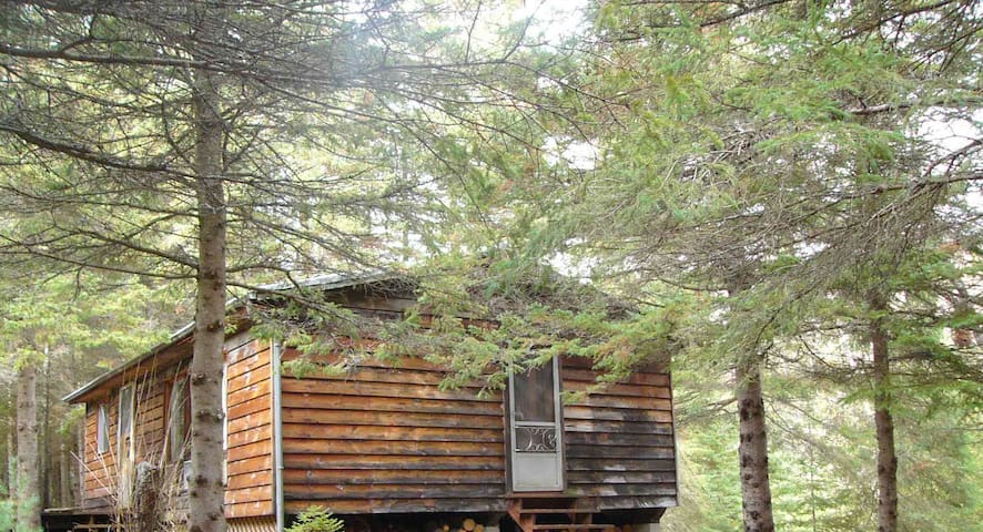 Algonquin cabin for rent all year round - Emsdale