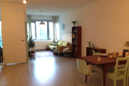 Spacious apartment with all you need. - Utrecht