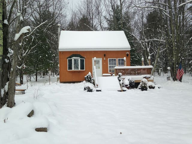 Cozy cabin 20 mins to Windham - Gilboa - Rumah