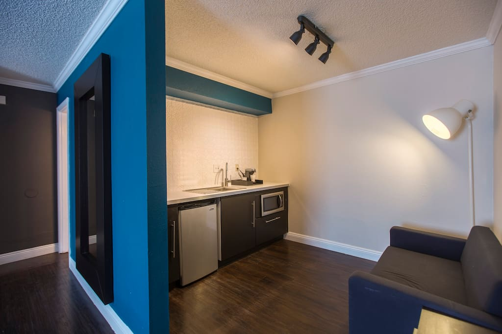 Wall mirror, track lighting, convertible sofa, kitchen w/ mini-fridge, micro-wave and coffee maker.  Coffee provided.