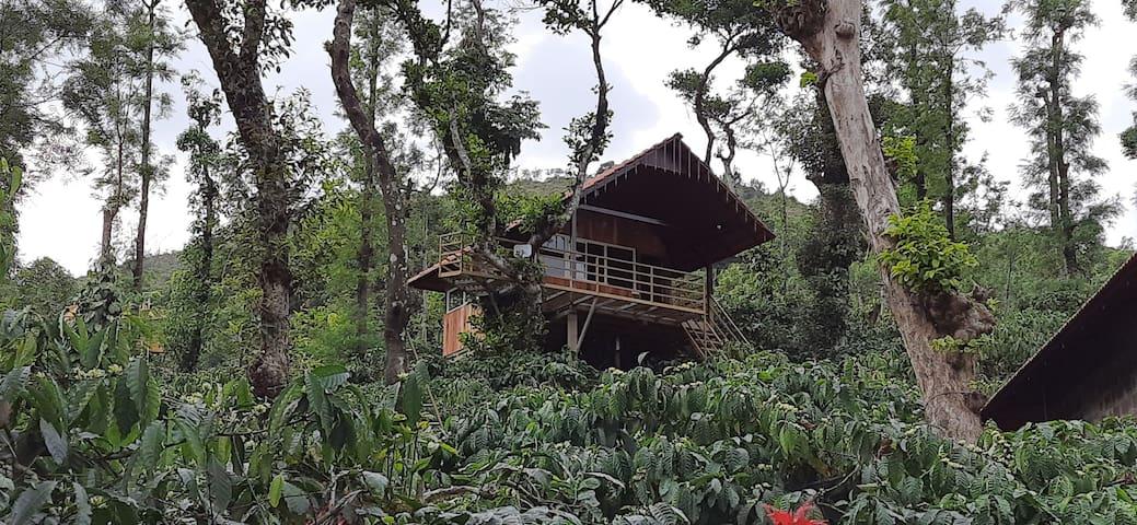 Kambalakaad Holiday Home-Treetop Wooden Villa Stay