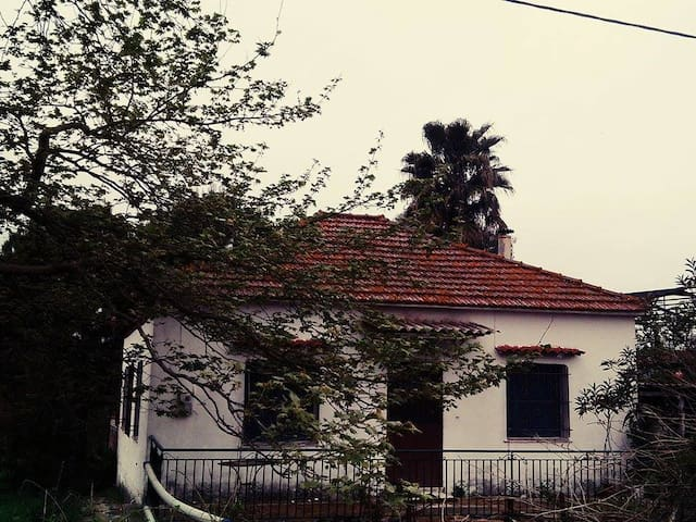 "Old Traditional,greek farm house in ""Anemomylos"""