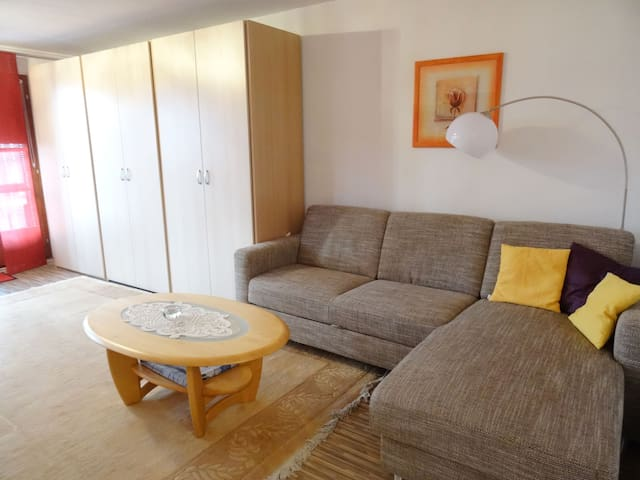 1-room apartment 38 m² Aragon for 2 persons in Ernen