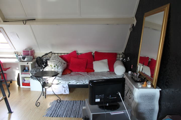 Nice attic room, nearby Strijp S and city center - Eindhoven - Haus