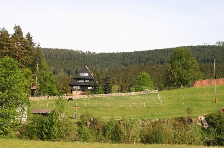 Fewo Forsthaus Biberach Nationalpark Schwarzwald - Forbach - Apartment