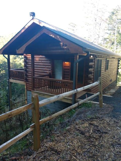 Bear Cliff Cabin, Cherry Log Georgia