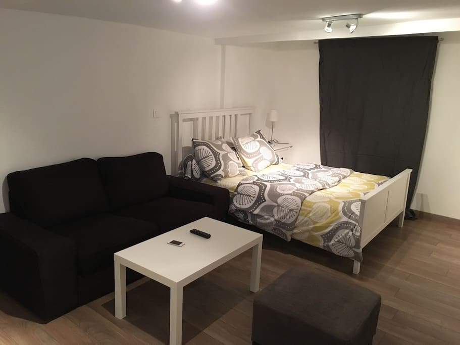 Apparth telstanding chamb ry centre loft in affitto a for Apparthotel chambery