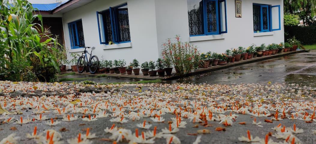 Cosy room, lush garden near old town Patan.