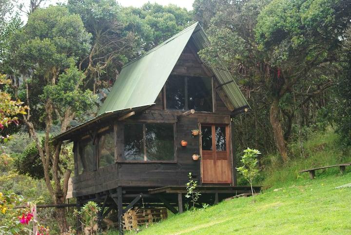 Cabaña chalet en la Calera, Tranquila y natural