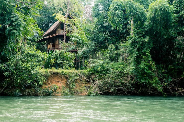 Two-Storey Treehouse River View - Khao Sok N.P