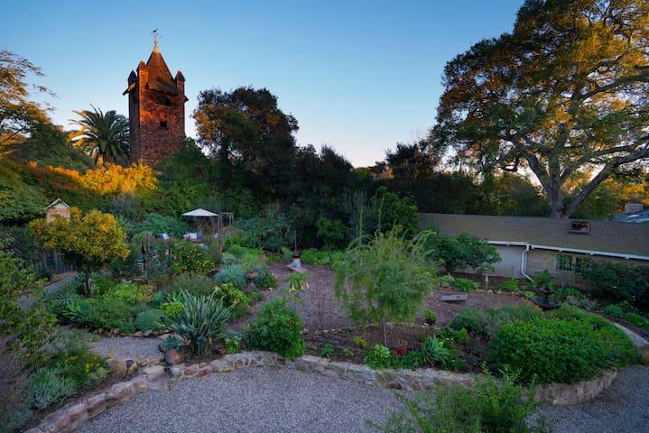 Communal garden view.