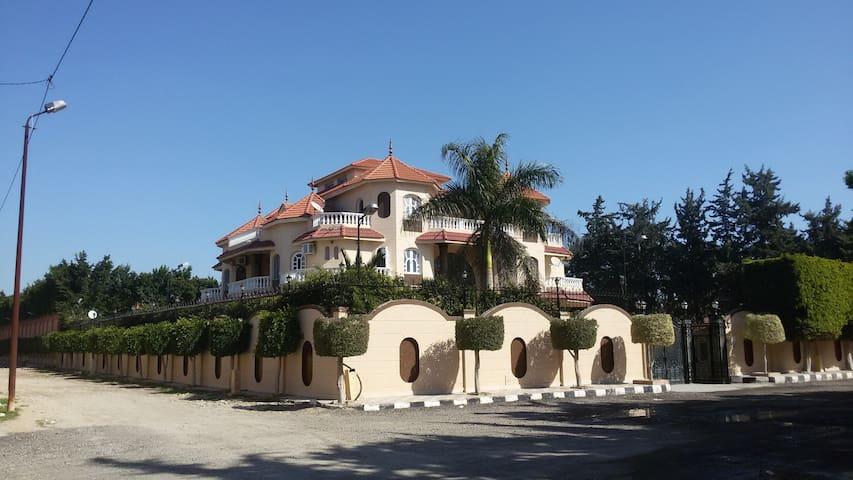 El pasha palace