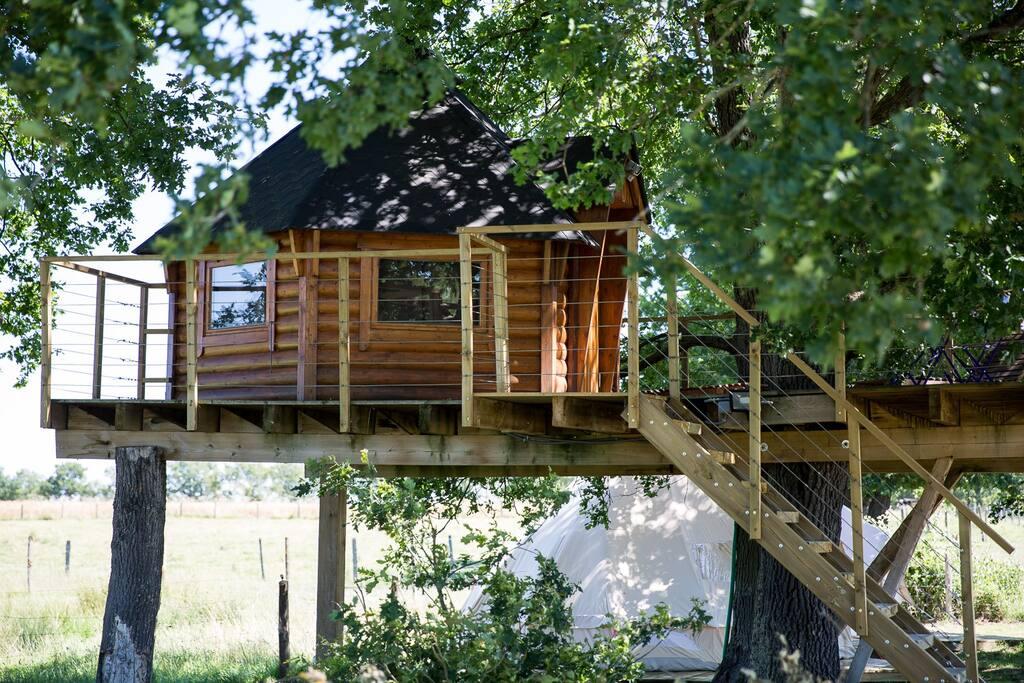cabane dans un arbre, petit nid douillet bien caché