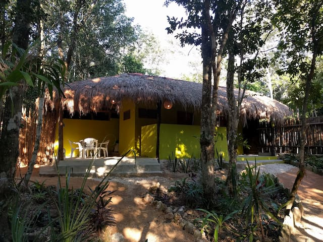 Jungle bungalow near Tulum with pool - Macario Gómez - 平房