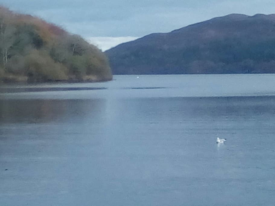 Enjoy a walk in Hazelwood located beside Lough Gill. It is the location for many of WB Yeat's poems.