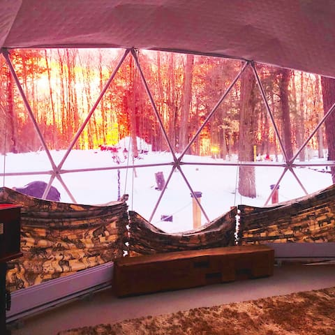 Skyview tent in the forest