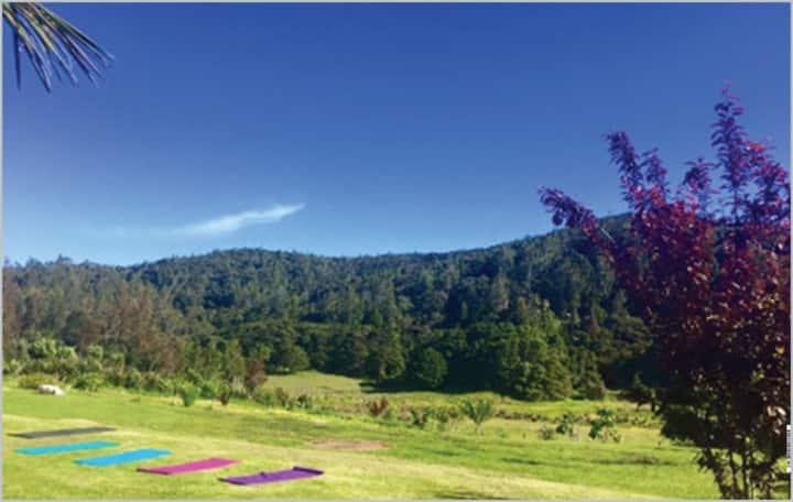 Mangawhai Organic Paradise Room 1