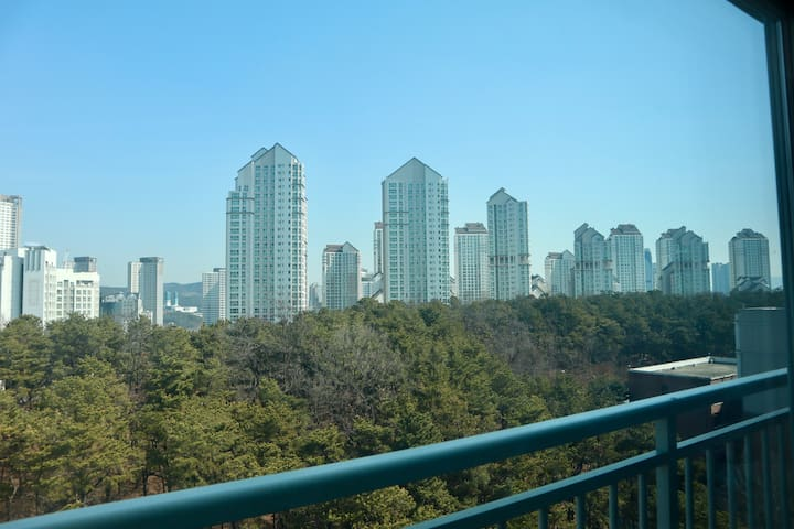 30 Minutes from Gangnam New Park View Apartment