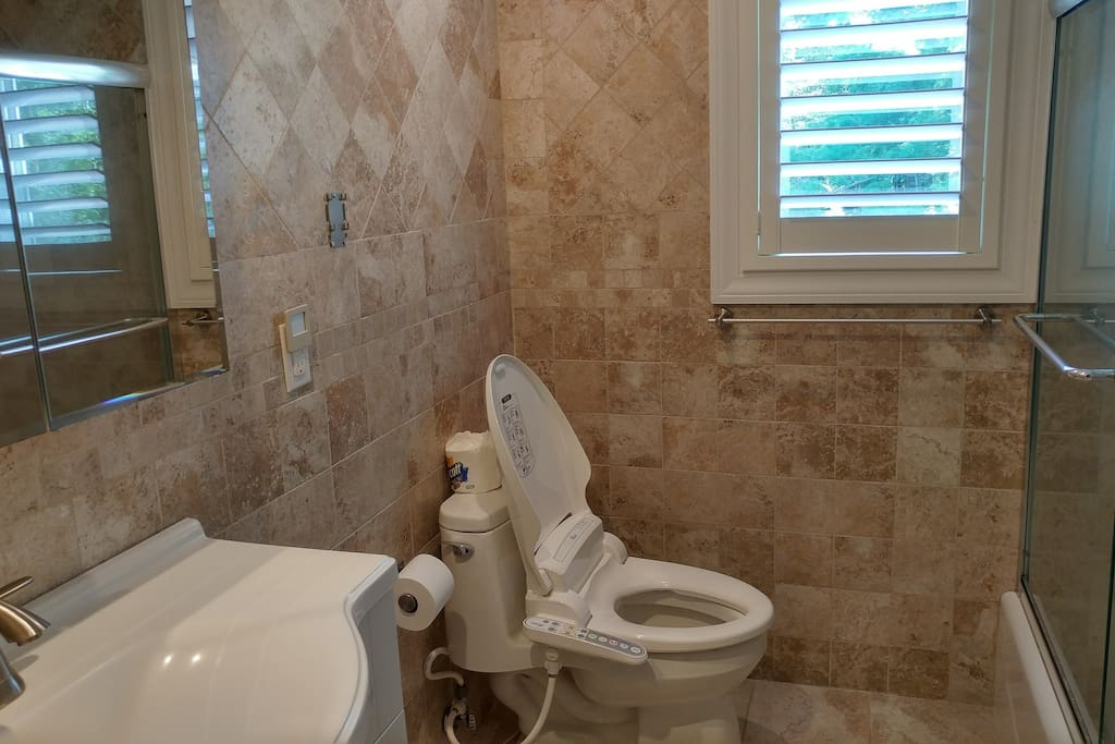 Full bath with tub and heated bidet seat with jet spray