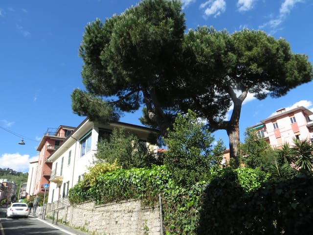 House with garden 100mts from sea - Lerici - Daire