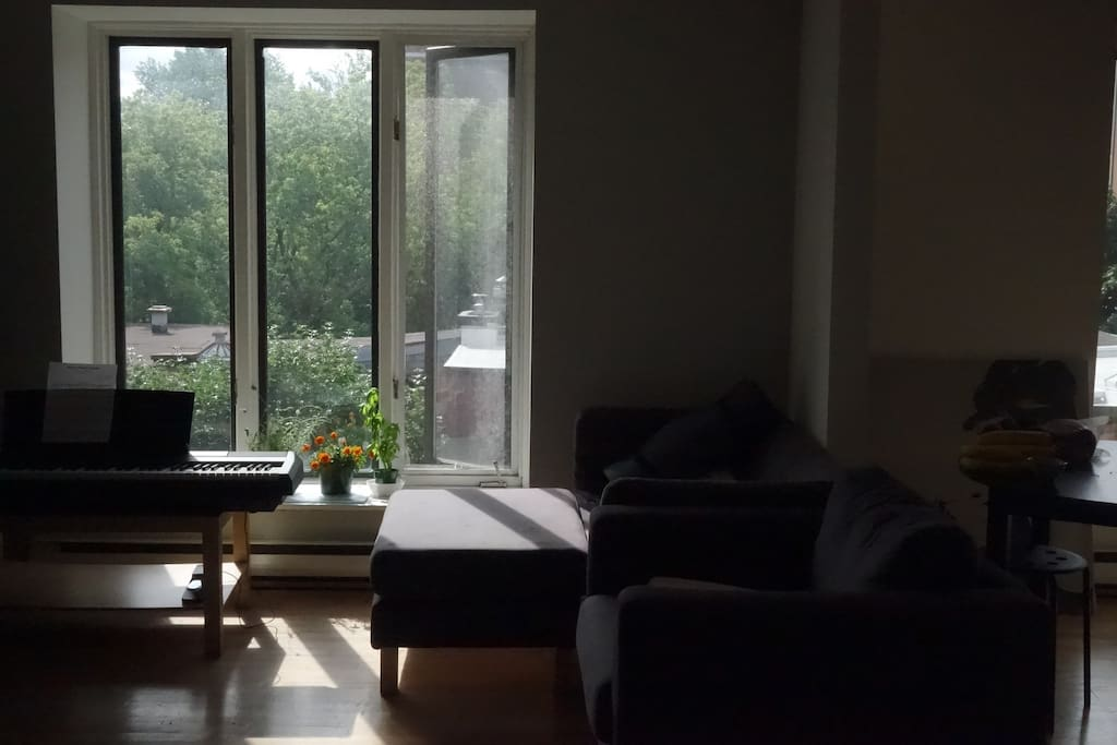 Living room in the morning