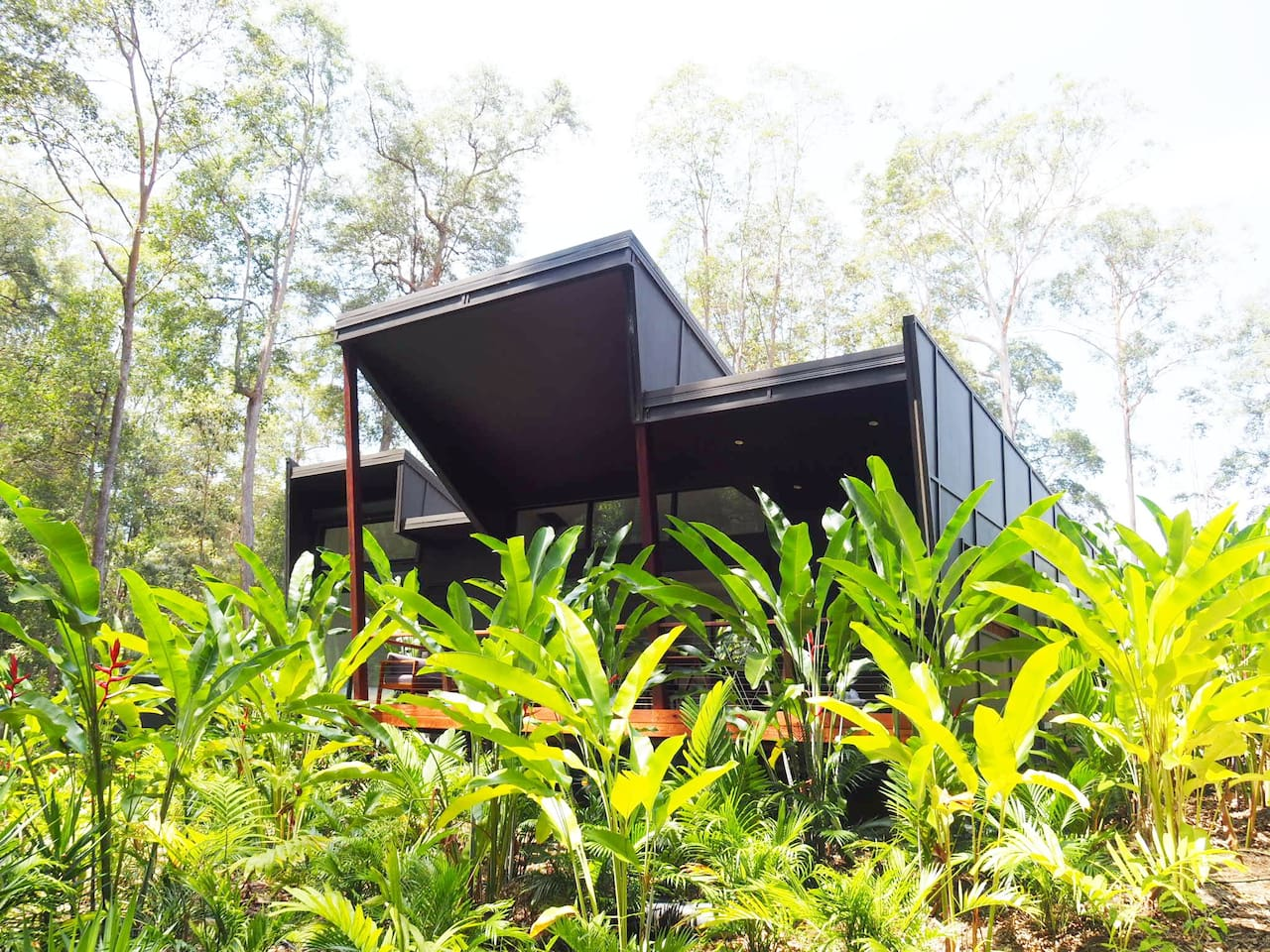 Stunning architecturally designed one bedroom home in the quiet bush out the back of Noosa.