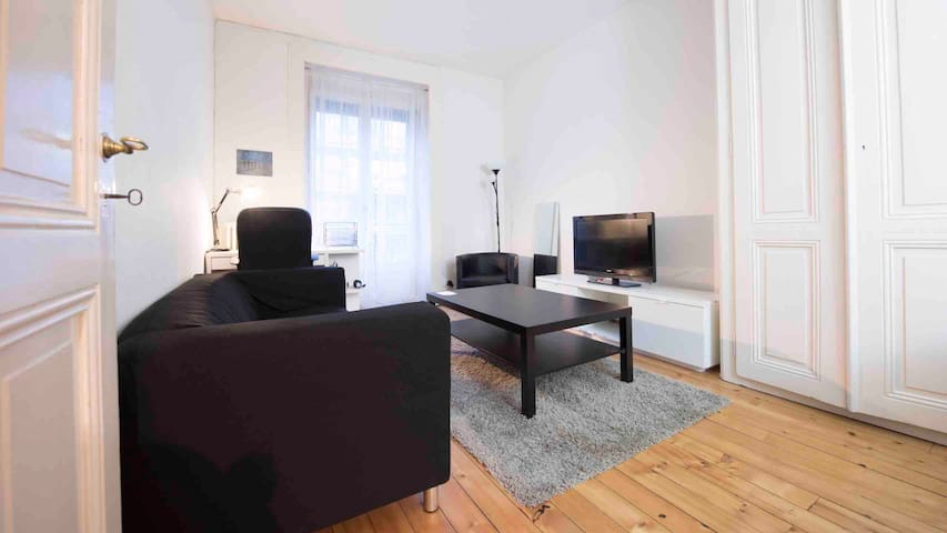Great apart Geneva center 200m from Rhone