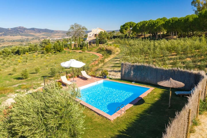Typical Andalusian Country House with views