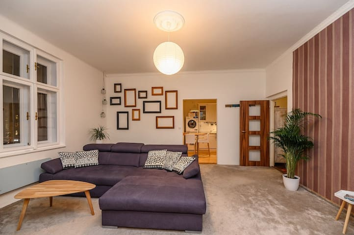 ^~^Stylish room at Carolina's Cozy Apartment^~^