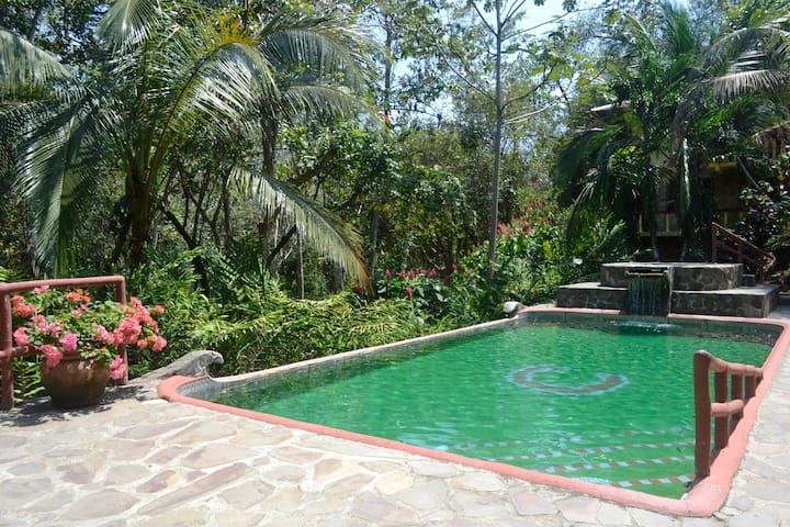Artist's Home in Paradise - Quepos - Huis