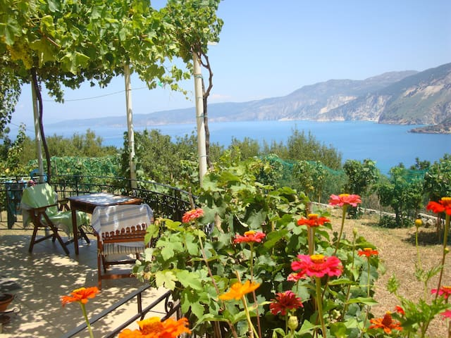 Charming apartment with amazing Myrtos bay view