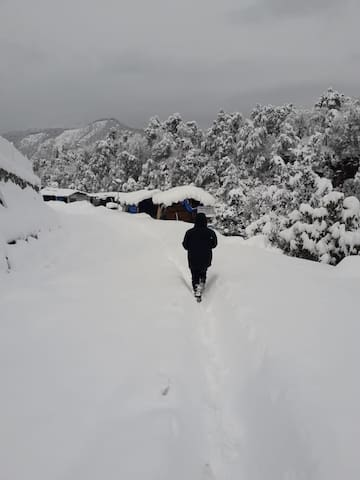 Saari Camp MHETCLUB- Himalayan view near Chopta