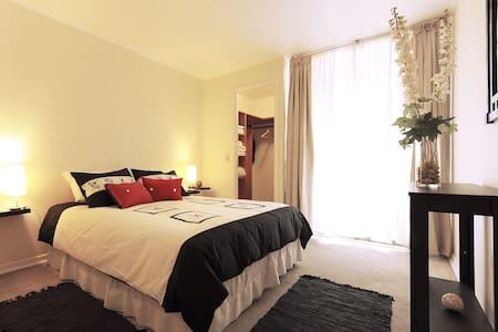 2 Bedroom Apartment in Santiago