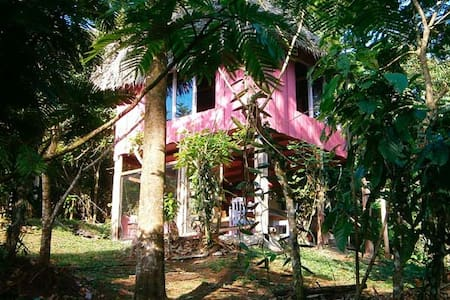 Vanilla Jungle Lodge - Your Home In The Rainforest